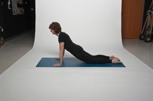 Plank prep